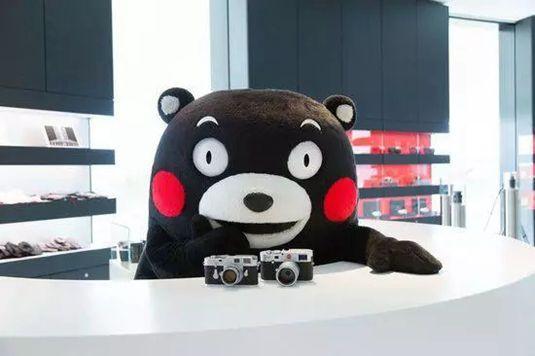 熊本熊在中国的表情包分享展示