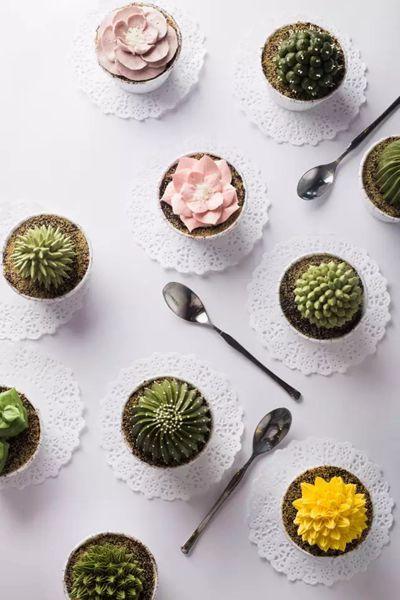 多肉植物盆栽蛋糕