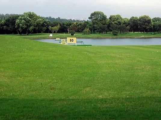 浦东棒垒球高尔夫公园桃花v公园是十里体育38集图片